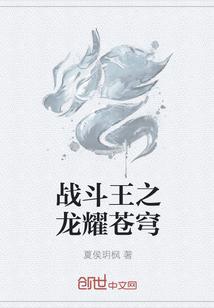 战斗王之龙耀苍穹全文阅读