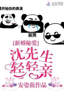 《新婚秘爱:沈先生轻轻亲》txt全文阅读
