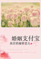 《高官的秘密恋人:婚姻支付宝》txt全文阅读